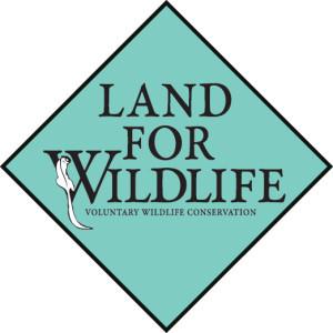 LfW_colour logo_rgb