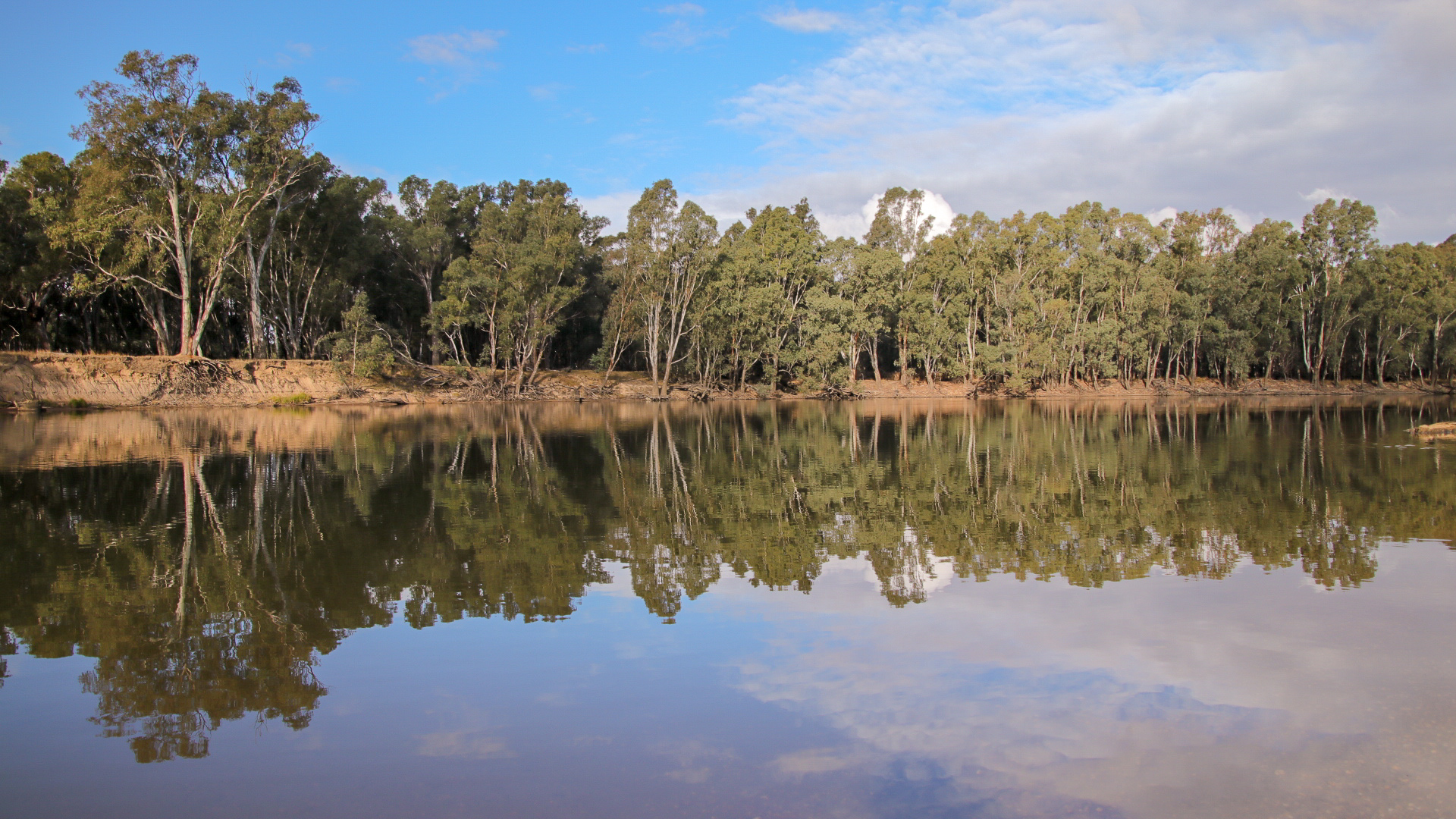 Forges Bend, Murray River © Kelly Coleman