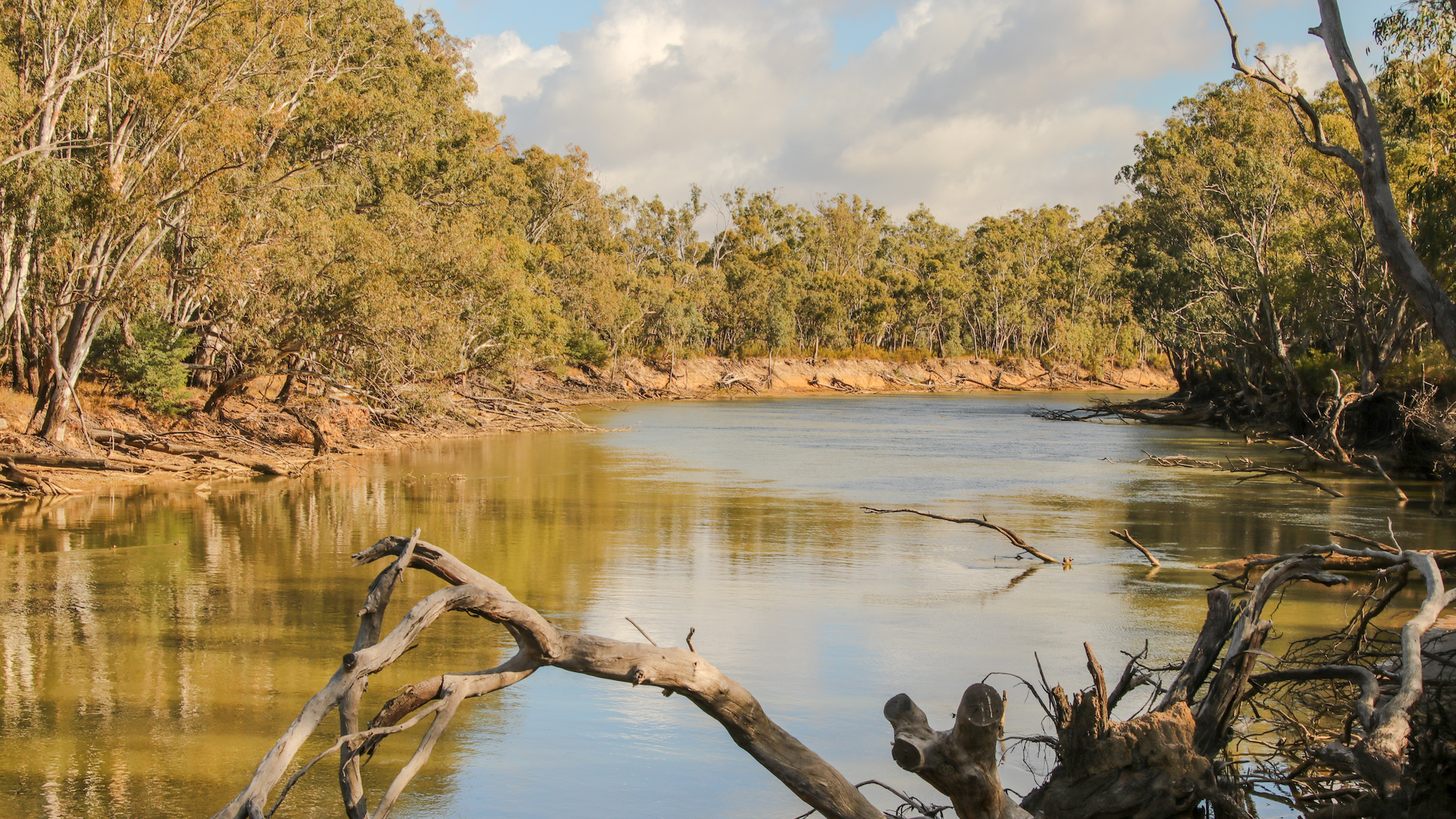 Murray River © Kelly Coleman