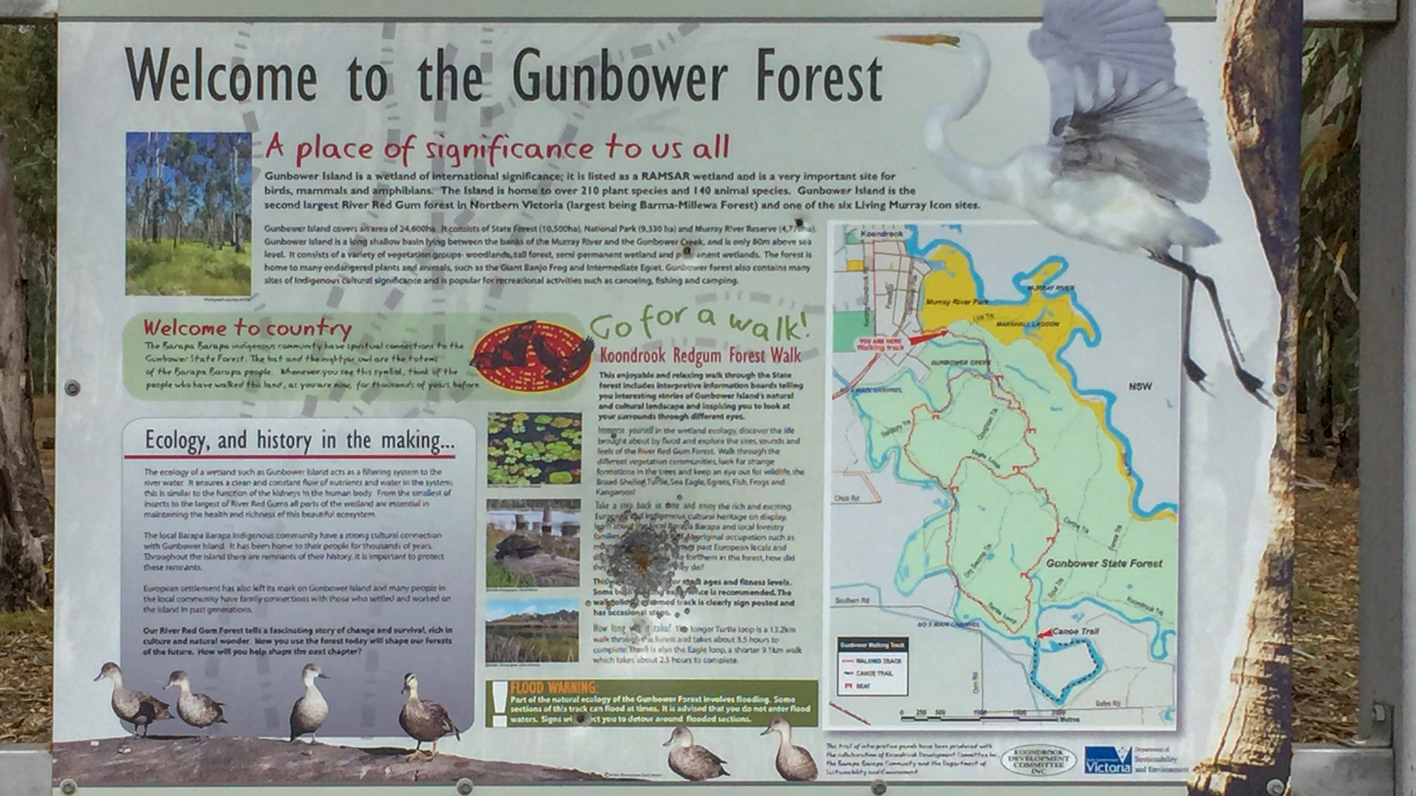 Gunbower Forest Sign © Kelly Coleman