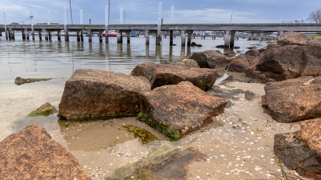 Raymond Island shore