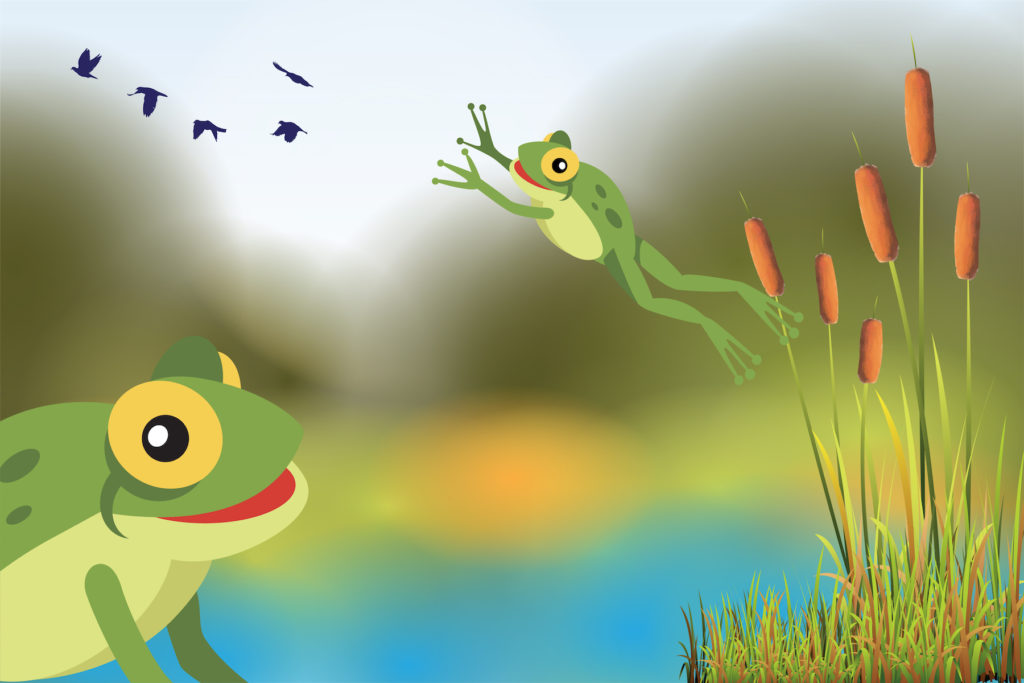Hop Into Frogs