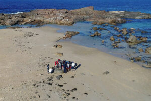 Mystery Bay Sea Country Excursion